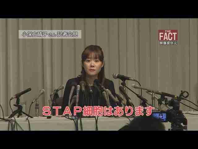 「STAP論文 小保方氏の不正確定?」―理研の判断が日本を衰退させる【ザ・ファクトFAST BREAK#14】