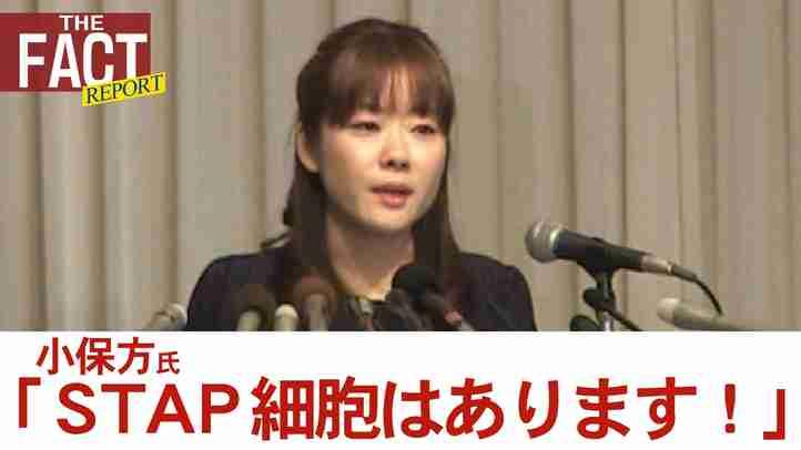 「STAP細胞はあります!」 4月9日反論会見 小保方氏本人と守護霊が激白!!【ザ・ファクト REPORT #3】