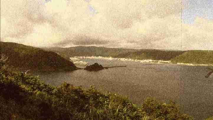 【現地レポート】奄美大島に数千人の中国人観光客を乗せたクルーズ船寄港計画が進行中! 住民の不安の声を緊急レポート[【ザ・ファクトREPORT】