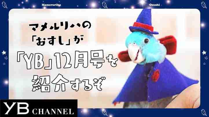 【青い鳥が1分で紹介】月刊ヤング・ブッダ(YB)2018年12月号【幸福の科学】