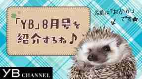 【動画】YB(ヤング・ブッダ)8月号は『宇宙』特集! 見どころをハリネズミが紹介【YB176号】