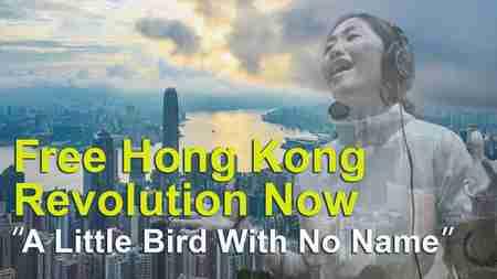 "【MV】Free Hong Kong,revolution now~""A Little Bird With No Name""【THE FACT】"