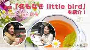 楽曲「名もなきLittle Bird」を紹介!【~On the Sofa~】【ミニコーナー】