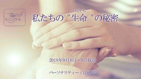 """私たちの""""生命""""の秘密 天使のモーニングコール 1406回 (2018.9.8,9)"""